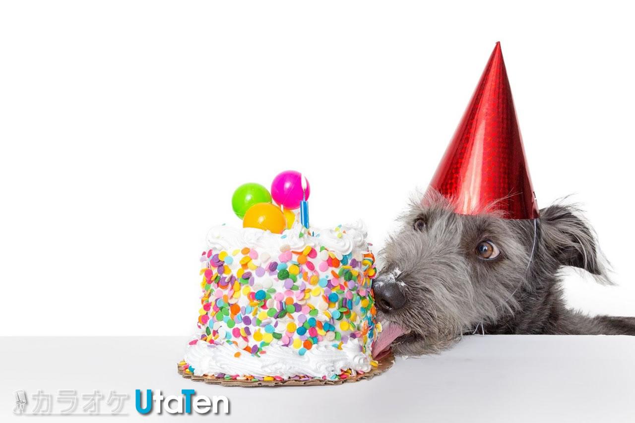 一度 に の ハッピー たった 1 誕生 日 の 今日 は 年 君 バースデー