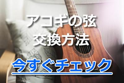 ギター 弦 張り替え アコギ